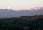 Olympic Mountains with Setting Full Moon at Sunrise